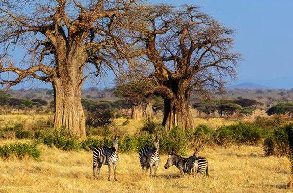 unexplored-tanzania
